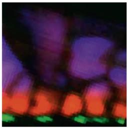 Allalin-Attolight-Cathodoluminescence-Defect-Detection-Nanostructure-Failure-Analysis-Materials-Characterization