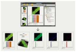 Attomap-Report-Attolight-Cathodoluminescence-Data-Analysis-Reporting-Solution